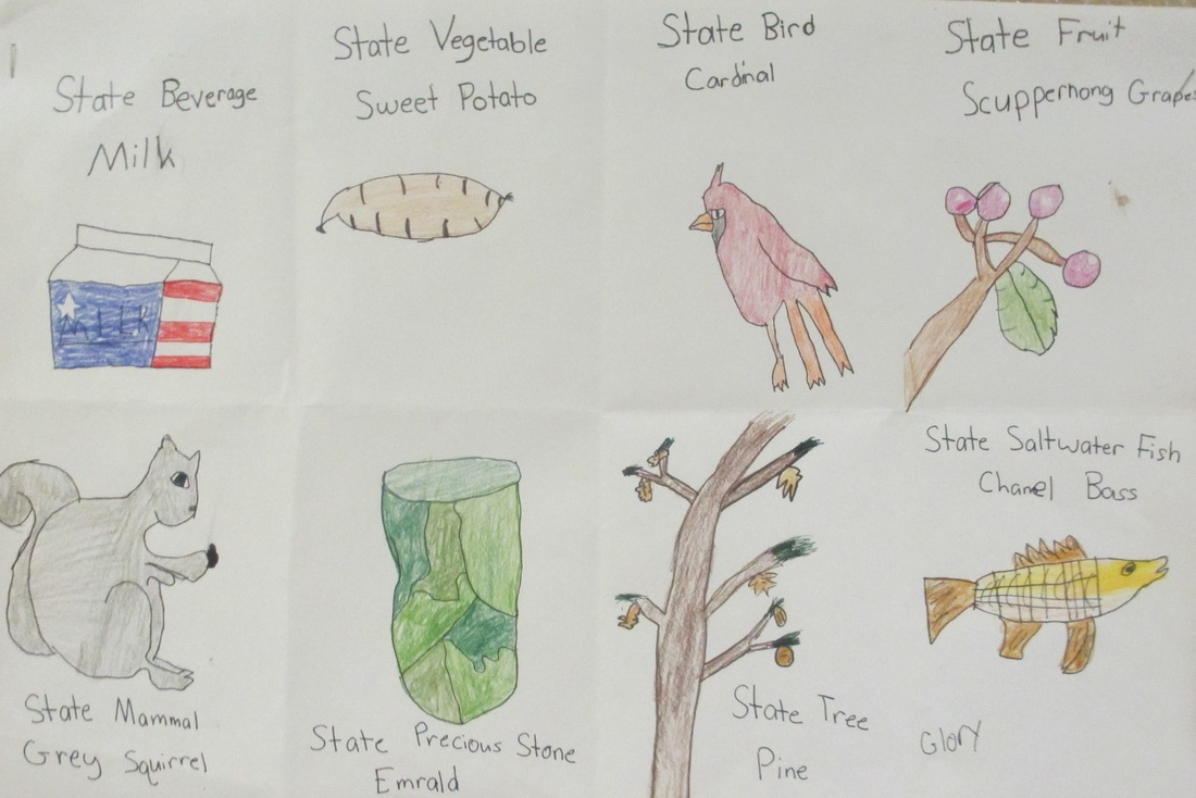 4th grade north carolina state symbols raiders for art buycottarizona